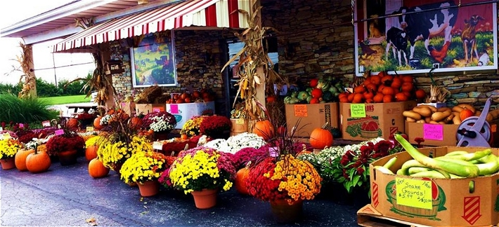 Hershey's Farm Market, Chester and Lancaster county grown produce, deer processing, dog treats, dutch bakery, homestyle deli, specialty meats, sandwiches, seafood.